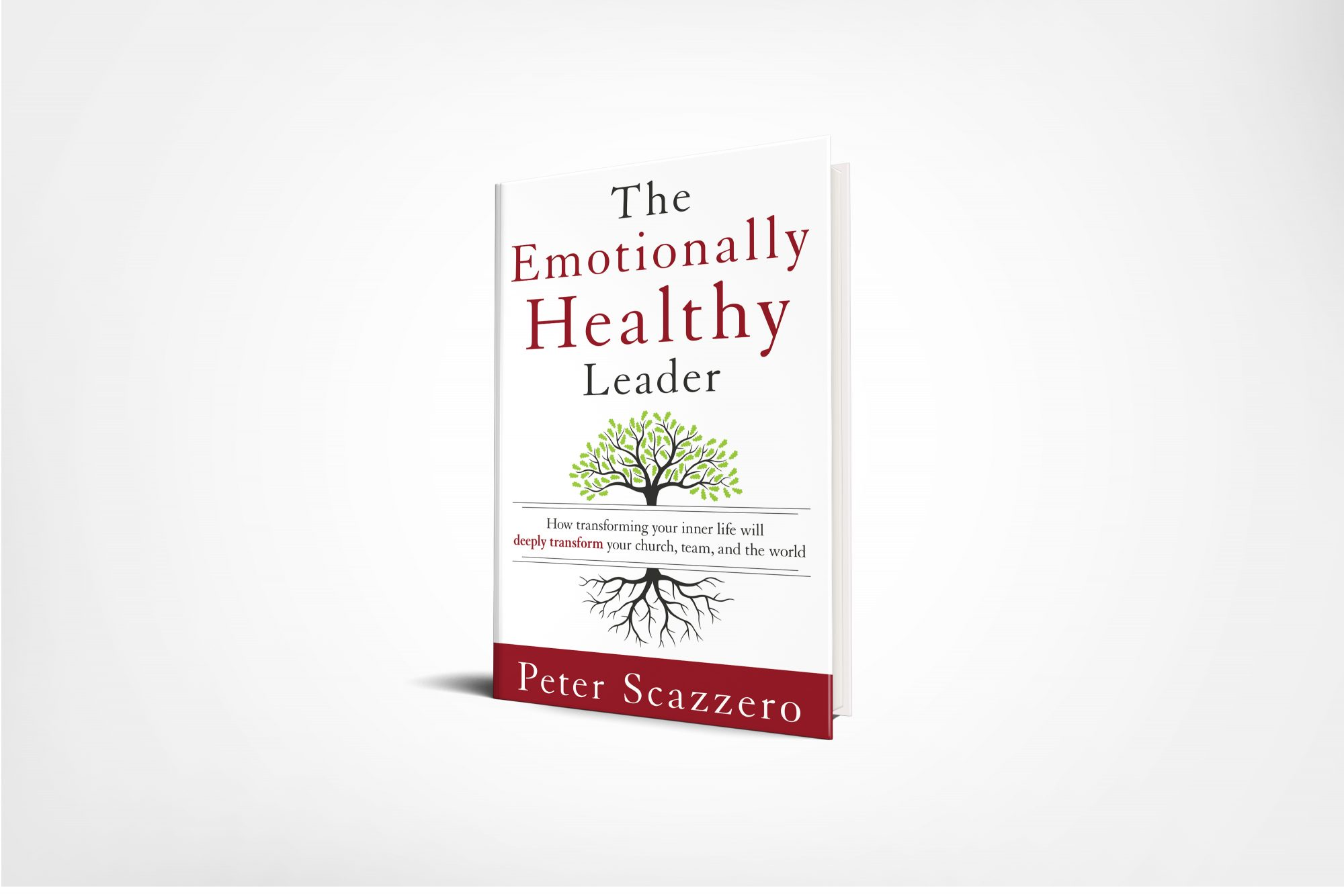 The Emotionally Healthy Leader Product Image